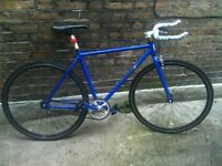 Blue fixie / single speed road racing bicycle