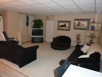 Beautiful Basement Suite for Rent in Millwoods