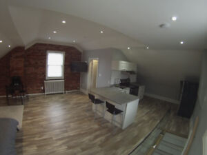 COMPLETELY RENOVATED LOFT .. A MUST SEE.