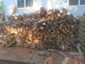 Dried hardwood