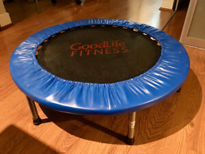 Mini Trampoline - GREAT DEAL!!!