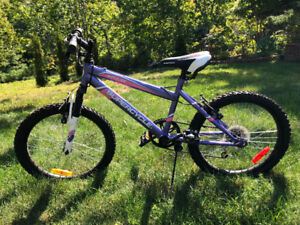 Girls 5 speed mountain bike