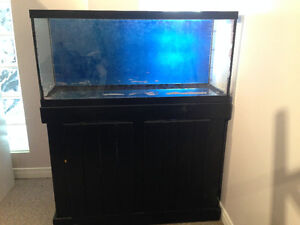 30 gallon aquarium with stand and T5 light