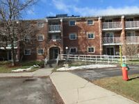 Still renting? Check out this 1 bdrm condo for only $139,900