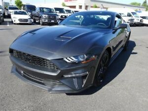 Ford Mustang EcoBoost ENS. NOIR 2018