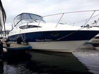 Bayliner 285 boat sealine searay maxum cruiser