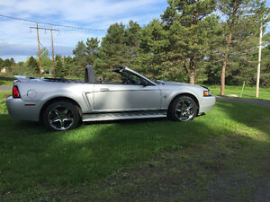 1999 Ford Mustang Cabriolet