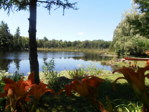 2 In 1!  Crystal Lake And Little Lake Retreat To The Kawarthas!