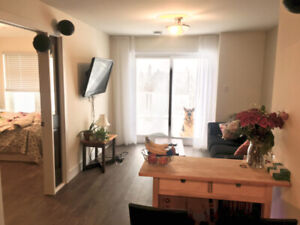 DOG FRIENDLY! EVERYTHING INCL! NEWLY RENOVATED
