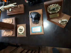 Collectable dog trophies