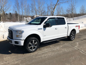 2015 F-150 XLT Crew Cab Sport, FX4 & Fully loaded 302A package!