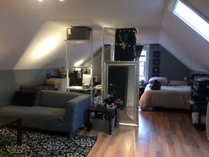 $700 all included Bachelor for sublet now to Sept 1- NEXT TO DAL