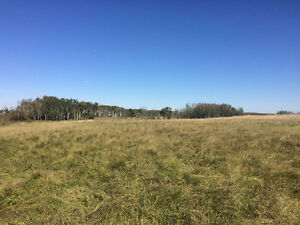 Half section of farmland for sale
