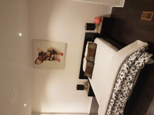 Queen Bed Set ,2 Side Tables & Matress