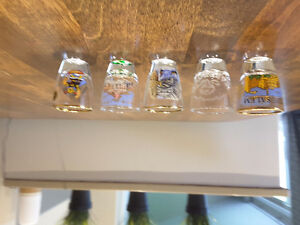 Mint Condition Shot Glasses from around the World
