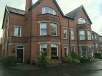 Ensuite Double Room to rent in Luxury Apartment on Annadale Avenue
