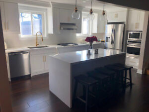 Special offer on Kitchen Cabinet & Renovation  ontario services