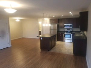 Large 2 bed 2 full bath apartment available immediately