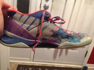 What the kobe's ( basketball shoes )