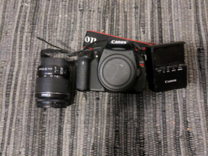 Canon Rebel T3i with 18-55mm Lens