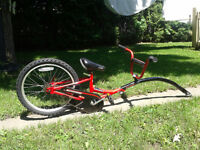 Bike trailer(Schwinn ride a long)