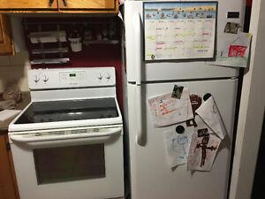 Fridge, stove, dishwasher, and microwave