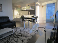 2+ BEDROOM BEAUTIFULLY FURNISHED APARTMENT IN DOWNTOWN TORONTO