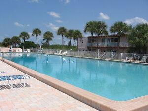 Indian Shores Florida Condo (St. Petersburg area)