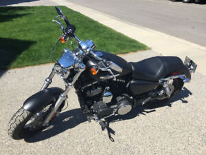 Harley Davidson Sportster XL 1200 CP - Black Denim. Low KMs