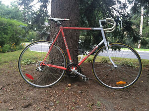 Rally vintage racer 12 speed