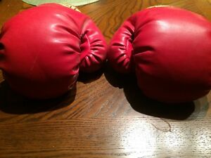 Boxing gloves and targets for young girl or boy Regina Regina Area image 6