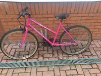 Bike needs TLC