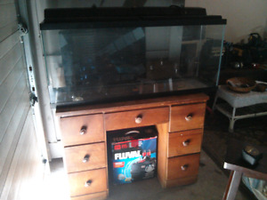 50gallon aquarium with fluval 306 filter TAKING OFFERS