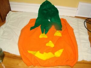 Pumpkin costume - Halloween (kids size medium)