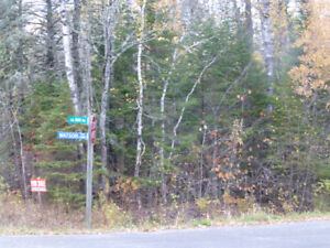 One acre lot for camp or trailer