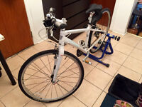 """TREK 7.5 FX (38 cms. / 15"""") WOMAN bicycle 