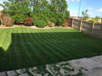 Property Maintenance, Lawn Care