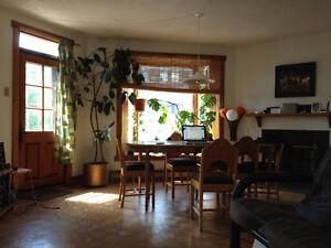 big room in sunny apartment 540$  pour mi-juillet