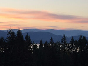 Large Lake View Suite in Upper Salmon Arm