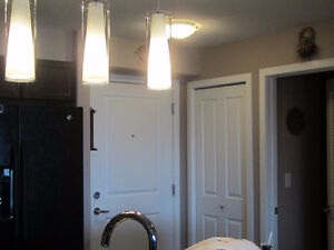 Beautiful 2 bedroom new modern condo 5 minutes from all shopping Regina Regina Area image 3