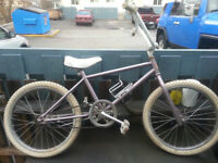 1971 Randor Par Excellance Bmx All Original