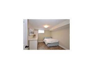 two bedroom appartment in basement