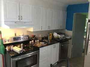 Maison à revenu à vendre Lac-Saint-Jean Saguenay-Lac-Saint-Jean image 2