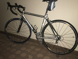 Specialized Allez Expert Road Bike