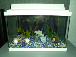 Aquarium blanc 5 gal.