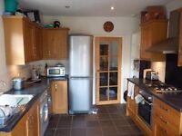 1 Double Room Available in this House Share