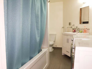4 1/2 WATERFRONT, Stainless Steel Appliances, Granite Countertop West Island Greater Montréal image 2