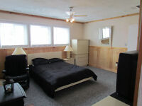 ROOM for RENT Large Lower Level -  DEC. 1 or ASAP- Johnstown, ON
