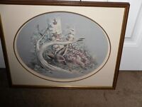 Very Nice Framed PAPER TOLE Picture Of A Fawn - As New - $25.00