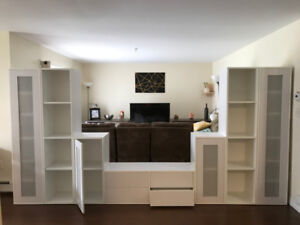 Wall Entertainment Unit for Family Room